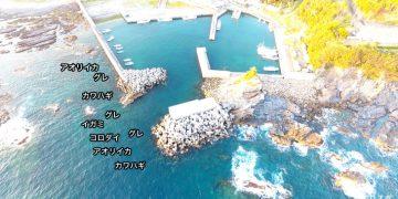 安指漁港空撮釣り場情報