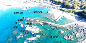 江住漁港空撮釣り場情報