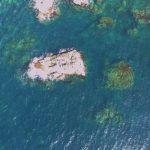 東の一の島