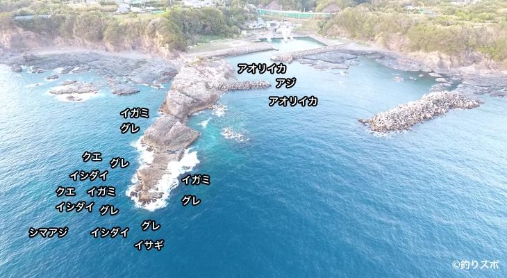 和深港空撮釣り場情報