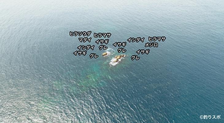 双子島空撮釣り場情報