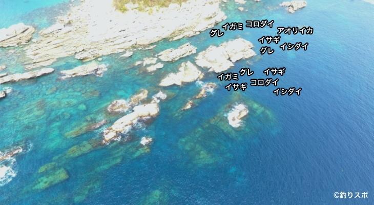 伊古木大島空撮釣り場情報