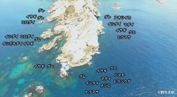 小石の鼻空撮釣り場情報