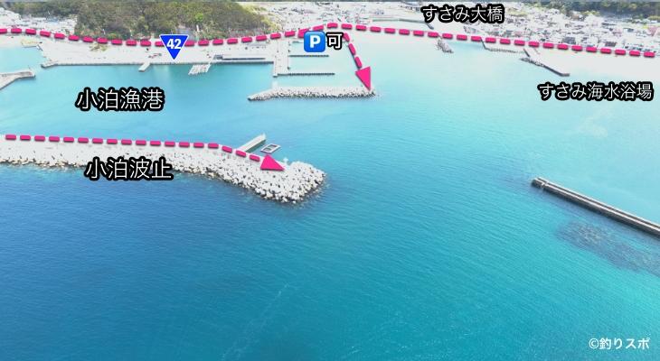 小泊漁港行き方