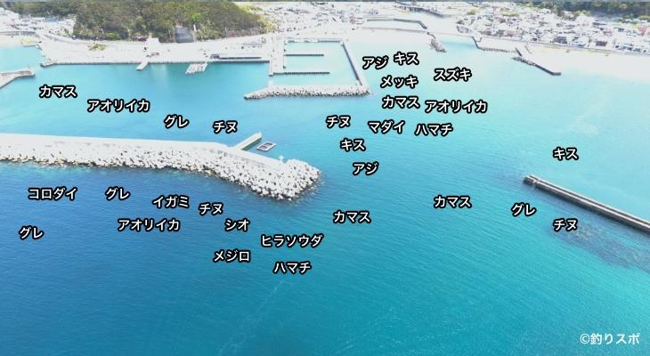 小泊漁港空撮釣り場情報