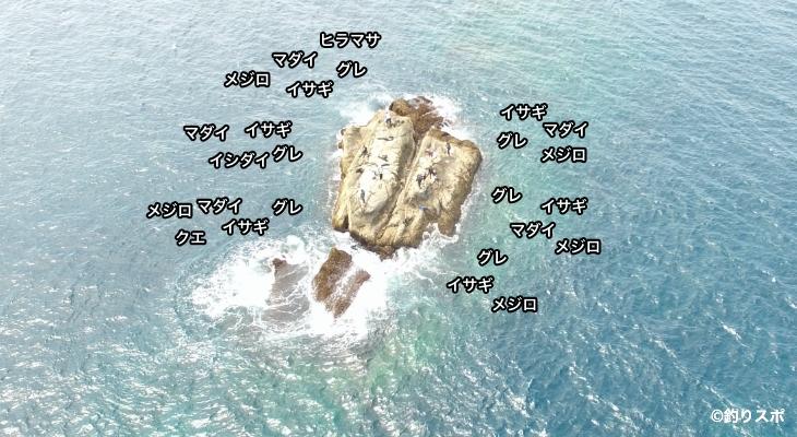 沖のセシマ空撮釣り場情報