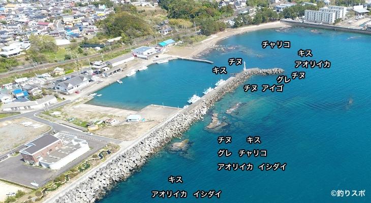 芳養漁港空撮釣り場情報