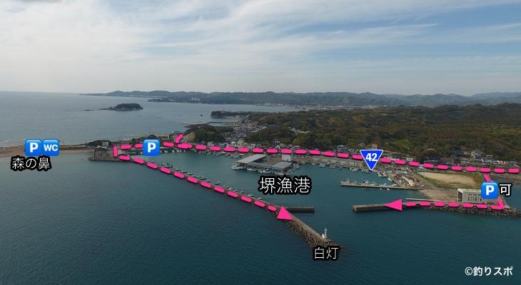 堺漁港行き方