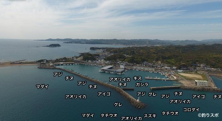 堺漁港空撮釣り場情報