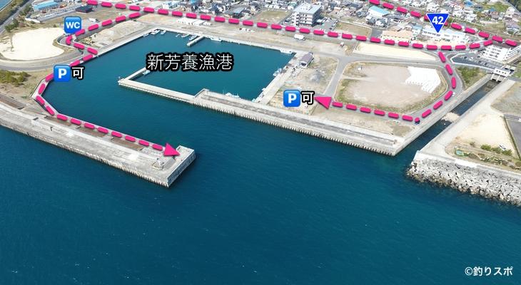 新芳養漁港行き方