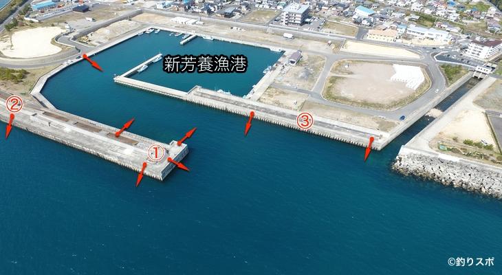 新芳養漁港釣りポイント
