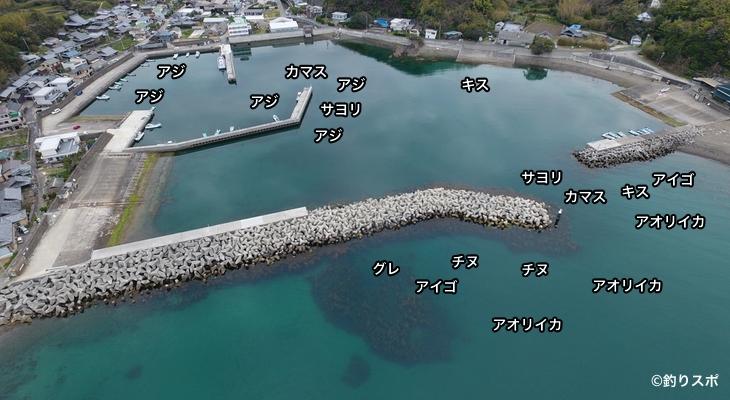 比井漁港空撮釣り場方法