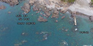 本ノ脇漁港空撮釣り場情報