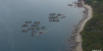沖のイカリ地のイカリ空撮釣り場情報