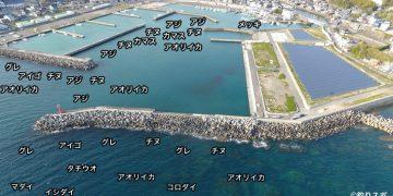 印南港空撮釣り場情報
