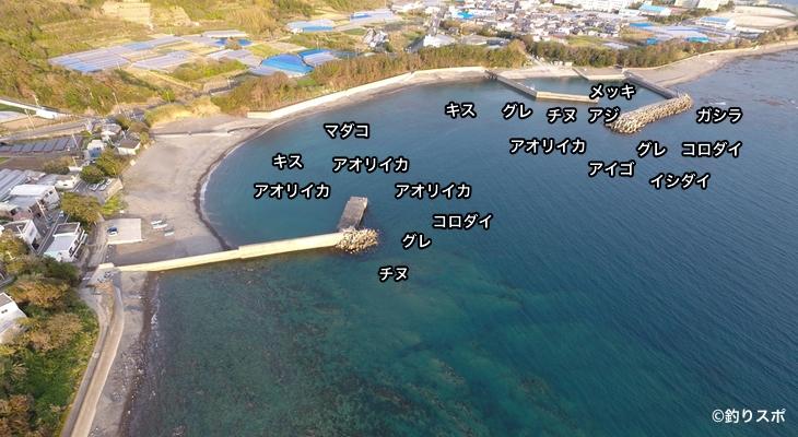 加尾漁港空撮釣り場情報