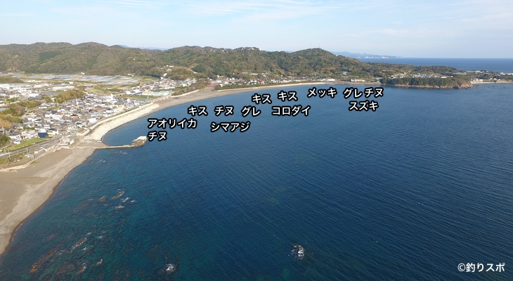 切目浜空撮釣り場情報