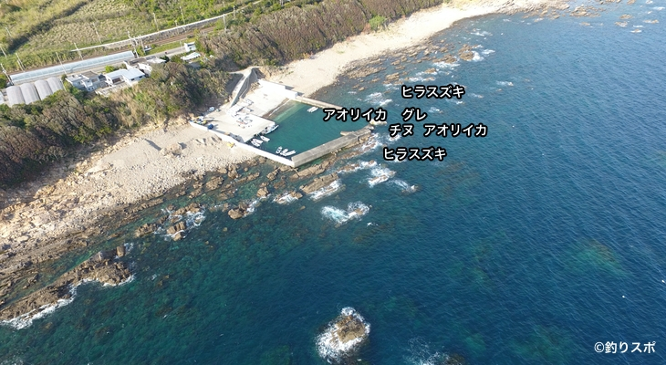 切目崎の港空撮釣り場情報