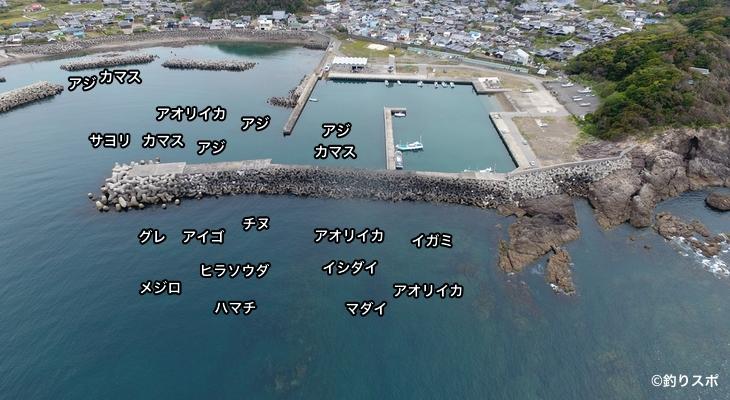 三尾漁港空撮釣り場情報