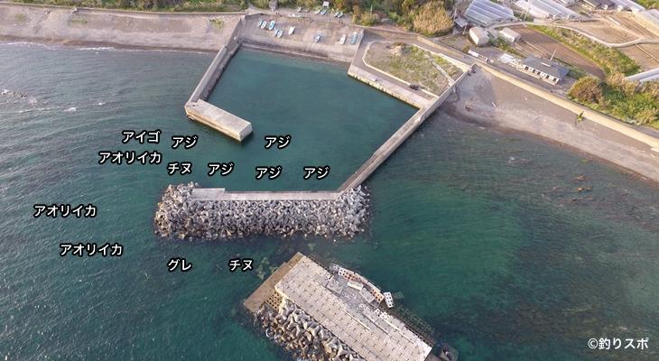 野島漁港空撮釣り場情報