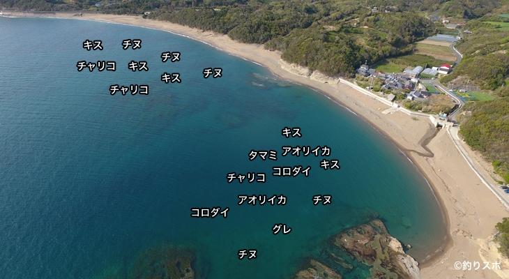 千里の浜空撮釣り場情報