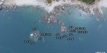 通り岩空撮釣り場情報