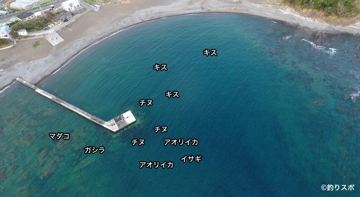 津井の波止空撮釣り場情報