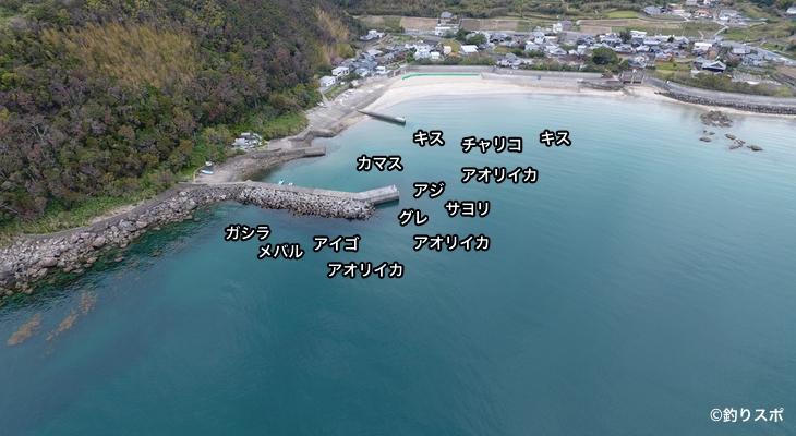 産湯漁港空撮釣り場方法