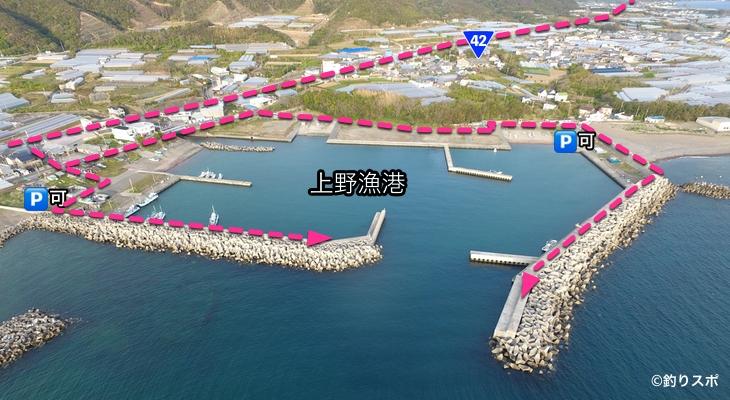 上野漁港行き方