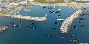 上野漁港空撮釣り場情報