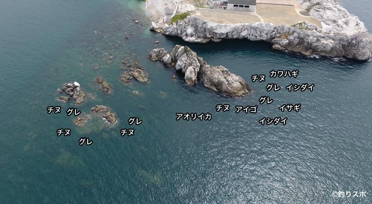 ビシャゴ空撮釣り場情報