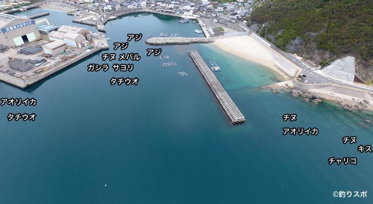 神谷漁港空撮釣り場情報
