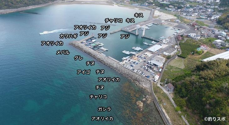 唐尾漁港空撮釣り場情報