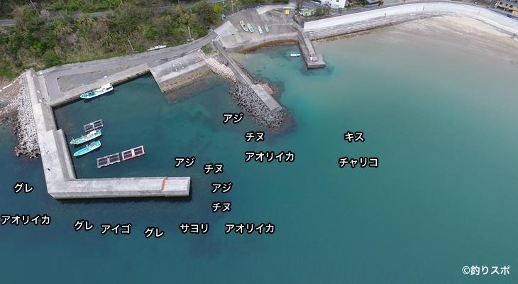 方杭漁港空撮釣り場情報