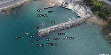 三尾川漁港空撮釣り場情報