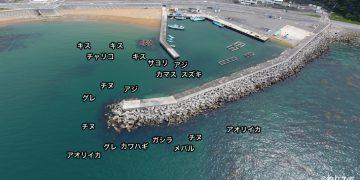 小引漁港空撮釣り場情報