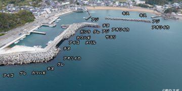 大引漁港空撮釣り場情報