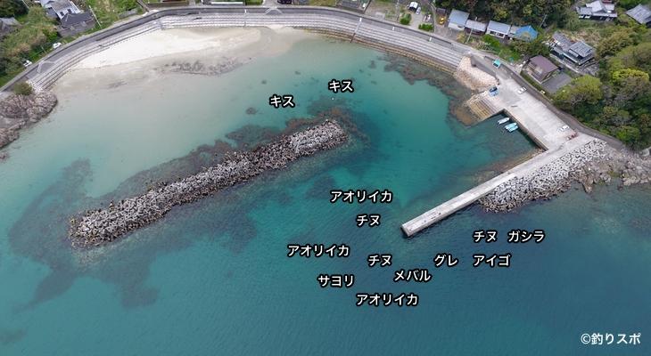 小杭漁港空撮釣り場情報