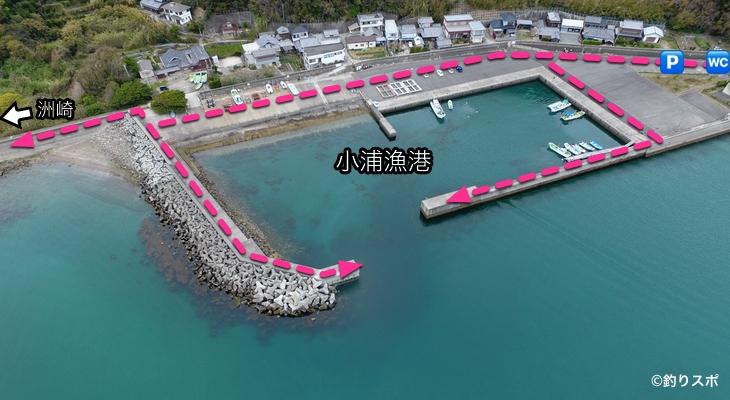 小浦漁港行き方