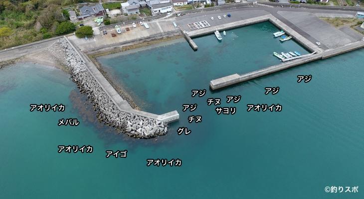 小浦漁港空撮釣り場情報