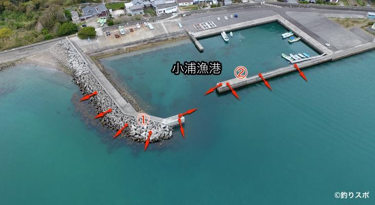 小浦漁港ポイント