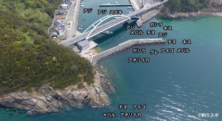 戸津井漁港空撮釣り場情報