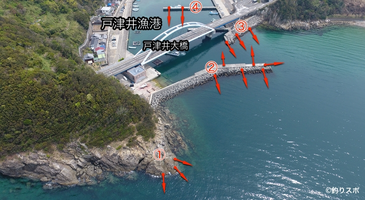 戸津井漁港ポイント