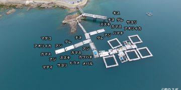 由良海つり公園空撮釣り場情報