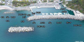 田村漁港空撮釣り場情報